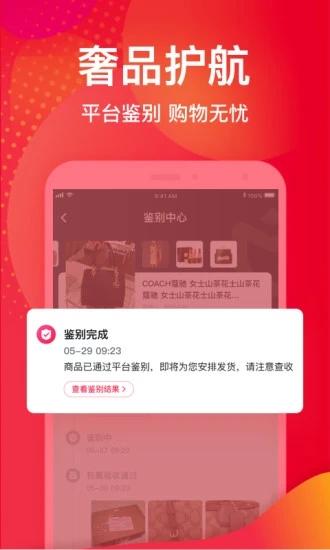 洋码头app下载安装截图