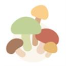 树洞菌下载免费