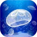 养育水母的治愈游戏中文版