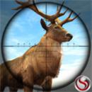 狙击手动物狩猎破解版