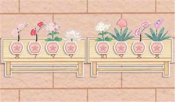 花店物语怎么上架花束?花店物语上架花束的方法
