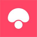 蘑菇街下载苹果版