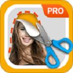 proknockout软件下载