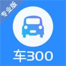 车300专业版下载