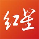 红星新闻app下载