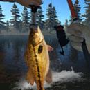 钓鱼模拟游戏下载