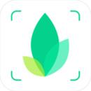 识物app下载