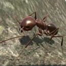 蚂蚁模拟3d中文版