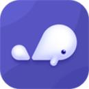 小京鱼app下载苹果