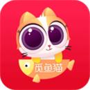 觅鱼猫app官网