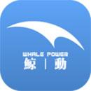 鲸动实验室软件下载