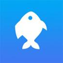大鱼潮汐app