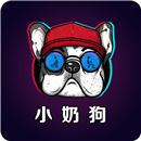 小奶狗app福引导完整版
