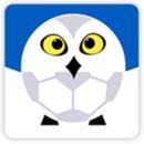雪缘园足球app下载