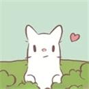 猫汤物语游戏下载